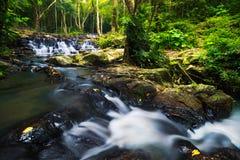 Córregos da montanha Imagens de Stock