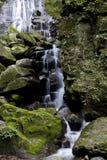 Córregos de cachoeiras de conexão em cascata Fotografia de Stock Royalty Free