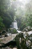 Córregos de Mount Emei em Sichuan, China Imagens de Stock