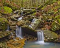 Córregos do ouro Foto de Stock
