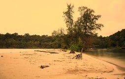 Córregos no mar Imagens de Stock Royalty Free