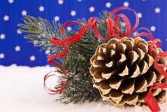 Cône de pin dans la neige Photo stock
