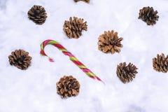 Cônes dans la neige Macro photo des cônes décoratifs Photo stock