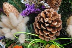 Cônes et fleurs de paille Photo stock