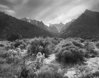 Côté est de Mt Whitney Photographie stock libre de droits