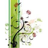Côté floral de vert de fond Photo libre de droits