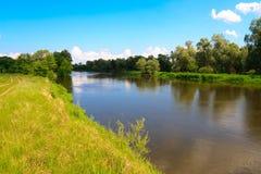 Côté vert de fleuve d'anomalie Photographie stock libre de droits