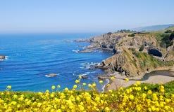 Côte 11 de la Californie Photo libre de droits