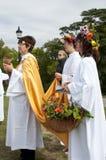 Côte 2009 de primevère d'équinoxe d'automne de 02 druides Images libres de droits