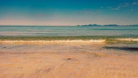 Côte avec la plage sablonneuse, Lofoten Norvège images libres de droits