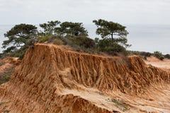 Côte cassée en stationnement d'état de pins de Torrey Photo stock