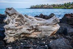 Côte 8 d'Hawaï Images libres de droits