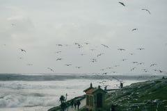 Côte de Baiona, Galicie Espagne photos libres de droits