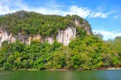 Côte de jungle Photographie stock