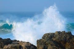 côte de l'Afrique au sud sauvage image stock