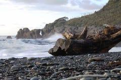Côte de la Nouvelle Zélande image stock