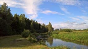 Côte de la rivière de forêt Photographie stock