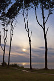 Côte de mer baltique Images stock