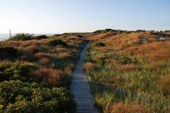Côte de mer baltique Photographie stock libre de droits