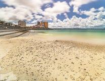 Côte de plage garnie des palmiers de mode de bord de la mer, de chêne de déformation, de bâtiments et d'hôtel Campana de bord de  photos stock