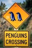 Côte du Nouvelle-Zélande photographie stock
