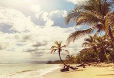 Côte en Costa Rica Images libres de droits