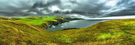 Côte et falaises spectaculaires d'Atlantik à la tête de St Abbs en Ecosse image libre de droits