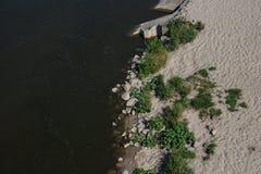 Côte et rivière et plantes vertes photos stock