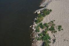 Côte et rivière et plantes vertes illustration de vecteur