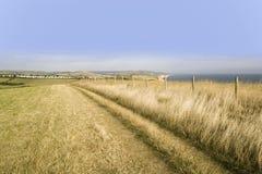 Côte jurassique p de Dorset de bouche d'eype de côte de bridport de l'Angleterre Dorset Image libre de droits