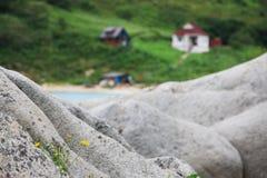 Côte Pacifique 3 Image libre de droits