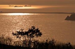 Côte Pacifique Photos stock