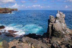 Côte parc national d'Espanola d'île, Galapagos, Equateur Images libres de droits