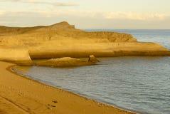 Côte Patagonian Photo libre de droits