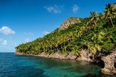 Côte rocheuse de palmier de Santa Catalina de plus petite île de Providencia photos libres de droits