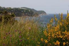 Côte rocheuse Lloret de Mar, Espagne Image stock