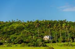 Côte verte avec des palmiers dans San Andres, Colombie photos stock