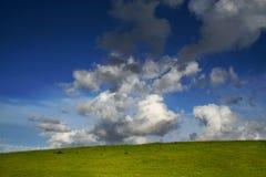 Côte verte, ciel bleu et nuages blancs images stock