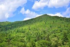 Côte verte et ciel bleu photographie stock libre de droits