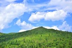 Côte verte et ciel bleu photo stock