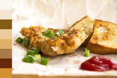 Côtelettes de porc frites fraîches arrosées avec les oignons verts et le ketchup Image libre de droits