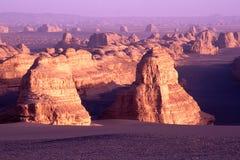 côtes de désert Image stock