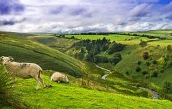 Côtes et vallées Photo libre de droits