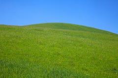 Côtes vertes de roulis Photos libres de droits