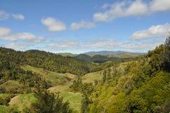 Côtes vertes en Nouvelle Zélande Images libres de droits