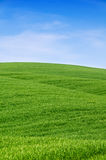 Côtes vertes et ciel bleu Images stock