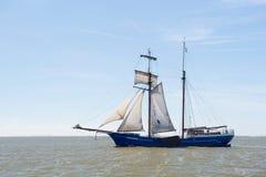 Cążki na holendera Wadden morzu Zdjęcie Royalty Free