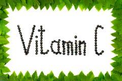 c新鲜的健康桔子样式维生素 在白色背景的黑醋栗莓果在从绿色叶子的框架 库存图片
