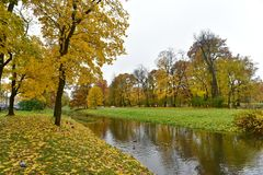 C'è alberi gialli ed erba verde da entrambi i lati del fiume immagini stock