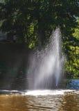 C'è una bella fontana in mezzo al lago Fotografia Stock